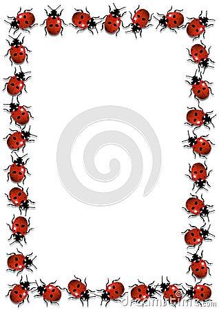 Ladybirds Frame