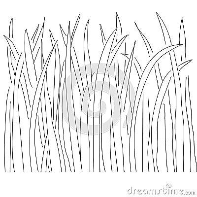 Grass Outline Vector Illustration Of...