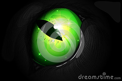 Illustration of a green cat eye Vector Illustration