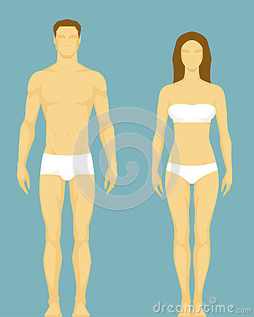 Illustration of a healthy body type of man and wom
