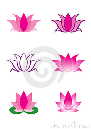 Illustration of lotus flower