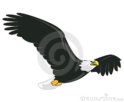 Illustration Of Majestic Adult Bald Eagle Flying Stock Images - Image: 16266004