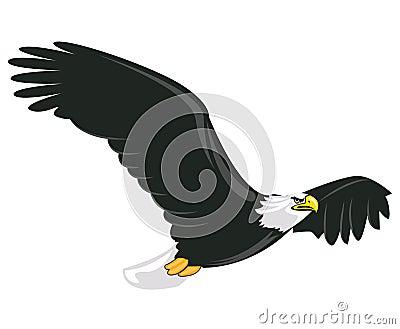 Illustration of majestic adult bald eagle flying