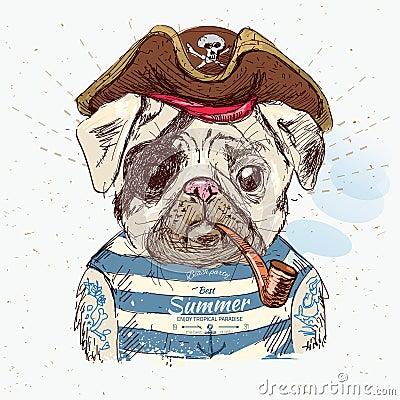 Free Illustration Of Pirate Pug Dog Stock Photo - 55588570
