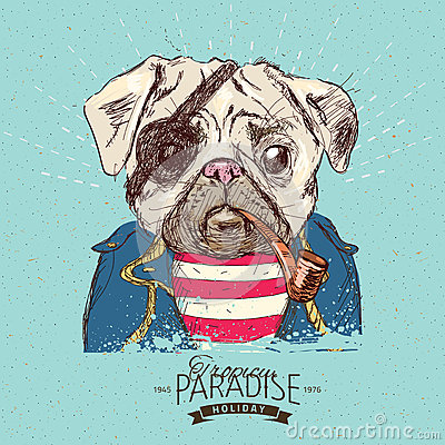 Free Illustration Of Pirate Pug Dog On Blue Background In Vector Stock Photography - 57945082
