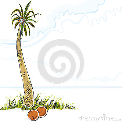 Illustration of palm tree in island.