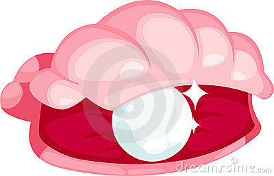 illustration pearl oysters vector
