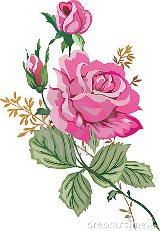 Illustration with pink roses