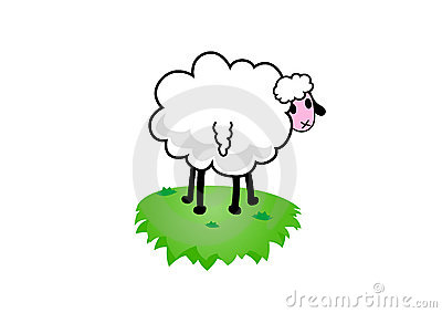 Illustration of sheep. Vector