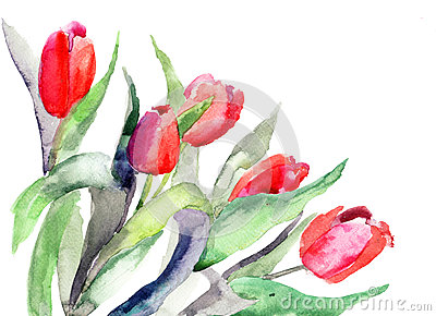 Illustration Stylisée De Fleurs De Tulipes Photos libres de droits - Image: 27155828
