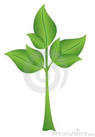 Illustration vector - small green plant