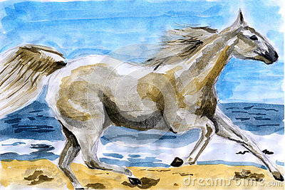 Illustration water color horse