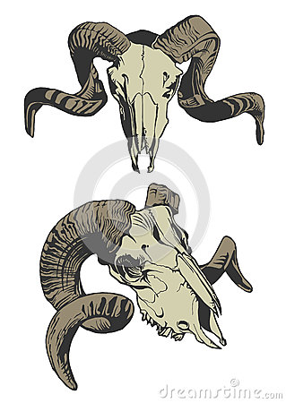 Free Illustration With Two Goat Skulls. Stock Images - 59254094