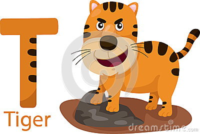 Illustrator of T with tiger