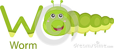 Illustrator of W with worm