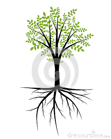 Ilustração da árvore