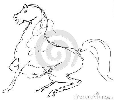 Ilustração do cavalo