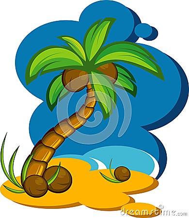 palmas de coco. UMA PALMA DE COCO (click