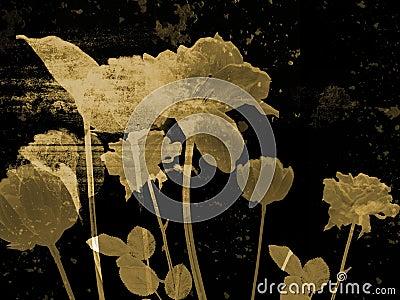 Ilustración de la bella arte - flor antigua