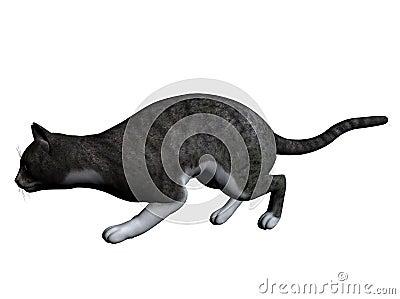 Ilustracja kota