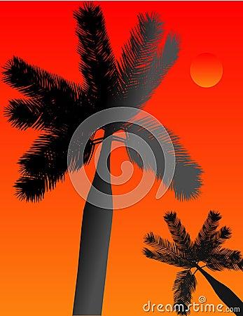 Ilustracyjny palmowy silhoueting raju tropikalny