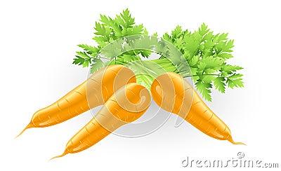 Ilustração alaranjada saboroso fresca das cenouras