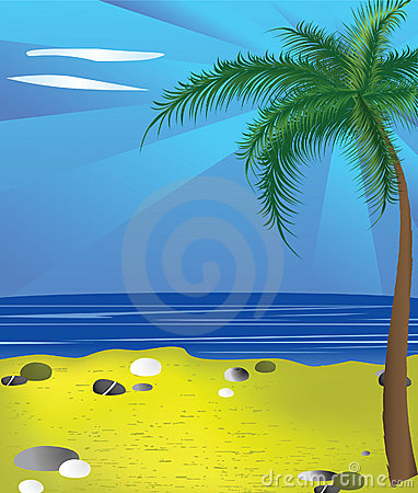 The image of a beach and a palm tree