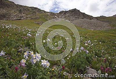 Image of beautiful Colorado mountain landscape