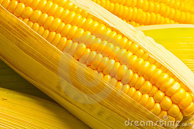 Image of Corns