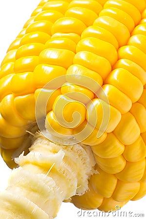 Imagen del maíz