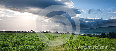 Imagen del paisaje del campo a las montañas