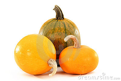 Images of fruits of the pumpkin
