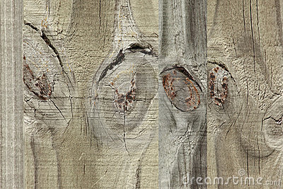 Images on wood