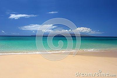 Immaculate tropical beach