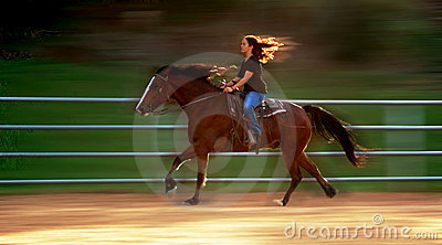Impressions of a galop