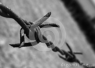 Imprigionamento