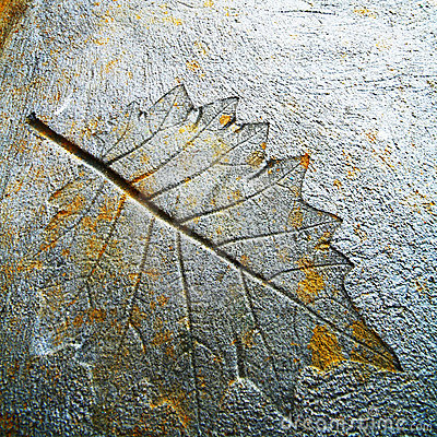Imprint leaf
