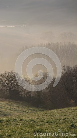 Free In The Mist Stock Image - 103229531