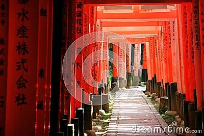 Inari torii gates - Kyoto - Japan