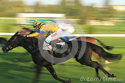 Inbaileysfootsteps in horse racing in Prague Editorial Stock Image
