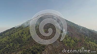 Incêndio florestal nas montanhas vídeos de arquivo