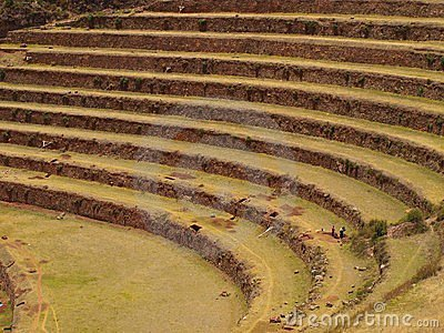 Inca agriculture terraces