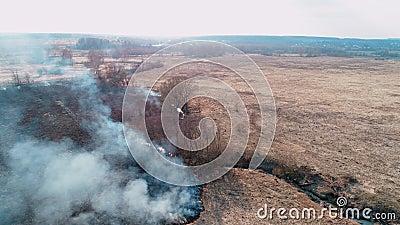 Incendios forestales y sobre el terreno Granos secos quemados, desastre natural El fuego se acerca a un pequeño arroyo metrajes