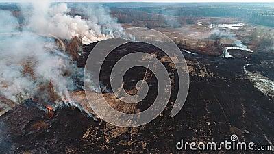 Incendios forestales y sobre el terreno Granos secos quemados, desastre natural Vista aérea La cámara avanza lentamente, volando  metrajes