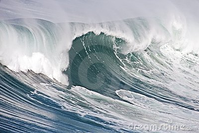 Incredible oceanic wave in Portugal