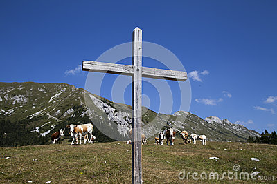 Incrocio e mucche di legno sulla montagna