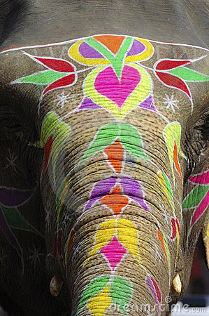 India Jaipur painted elephant
