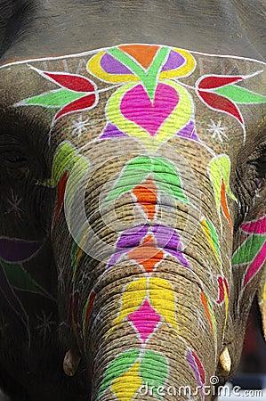 India Jaipur painted elephant