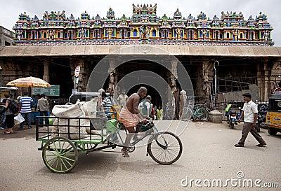 India - Meenakshi Editorial Stock Image