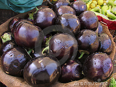 Indian aubergine abstract